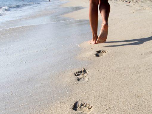 Soins de pieds Malix