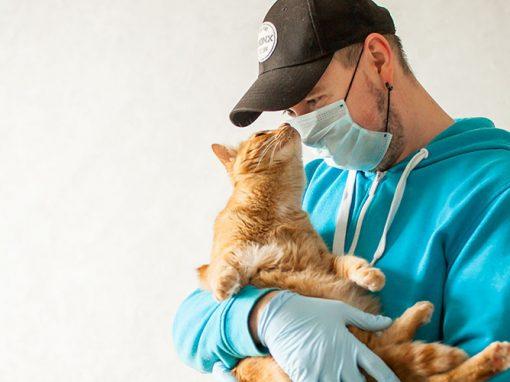 Clinique vétérinaire du Lac